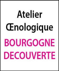 atelier oenologique Bourgogne Decouverte arts et vin 2
