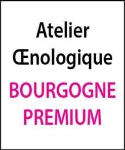 atelier oenologique Bourgogne Premium arts et vin 2