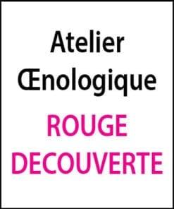 atelier oenologique Rouge Decouverte arts et vin 2