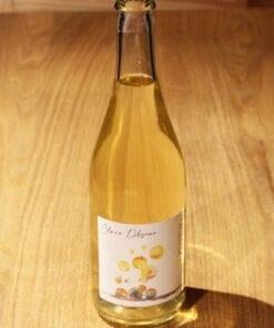 bouteille Vin nature petillant Clair Obscur Terres de Gaugalin sur table en bois